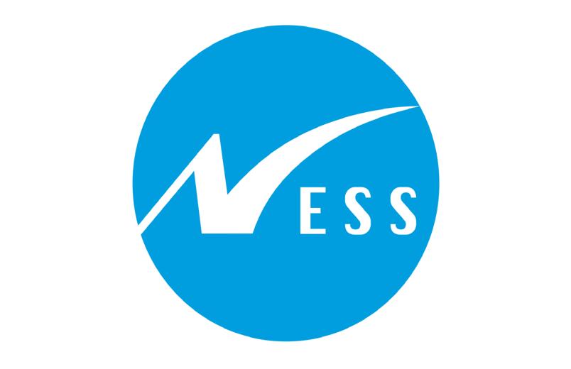 Partnership Company Logo Ness